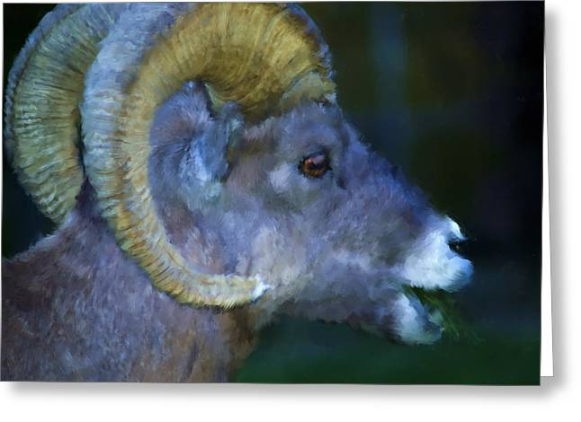 Bam Greeting Cards - Rams Head Greeting Card by Renee Skiba