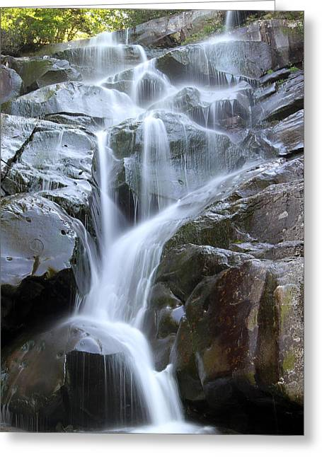 David Yunker Greeting Cards - Ramsey Cascades Greeting Card by David Yunker