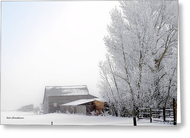 Snow On Barn Greeting Cards - Ranch in Frozen Fog Greeting Card by Kae Cheatham