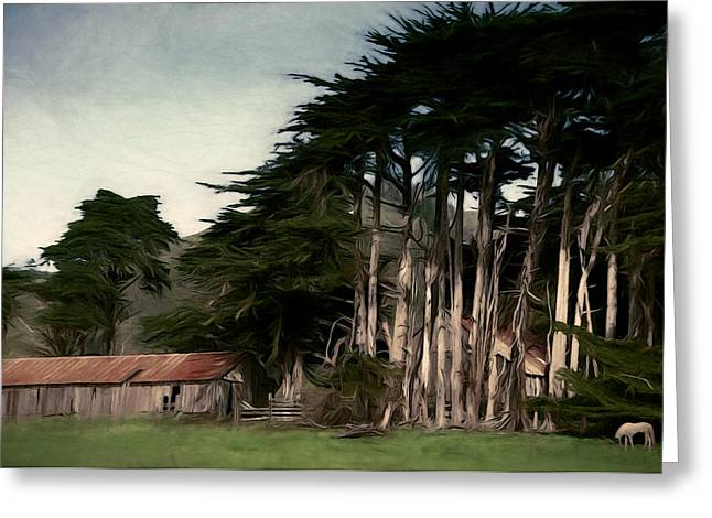 Sonoma Mixed Media Greeting Cards - Ranch with Cypress Greeting Card by John K Woodruff