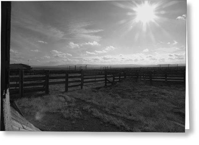 Rancho Colorado Greeting Card by Anna Villarreal Garbis
