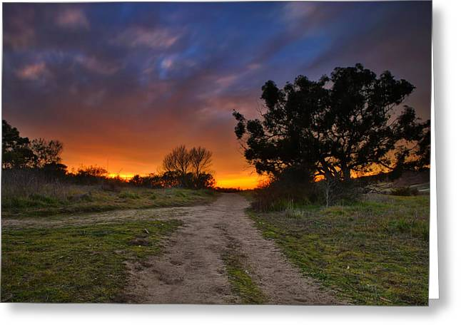 Pastel Pink Greeting Cards - Rancho Santa Fe Sunset Greeting Card by Larry Marshall