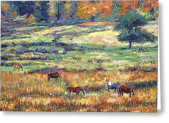 Wild Horse Greeting Cards - Range Country Greeting Card by David Lloyd Glover