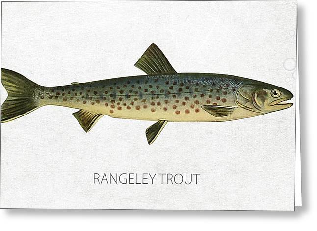 Salmon Digital Greeting Cards - Rangeley Trout Greeting Card by Aged Pixel