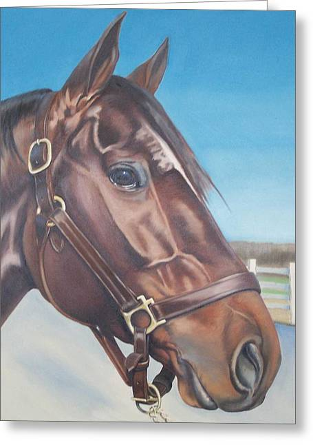 Equestrian Commissions Greeting Cards - Ranger Commission Greeting Card by Steve Messenger