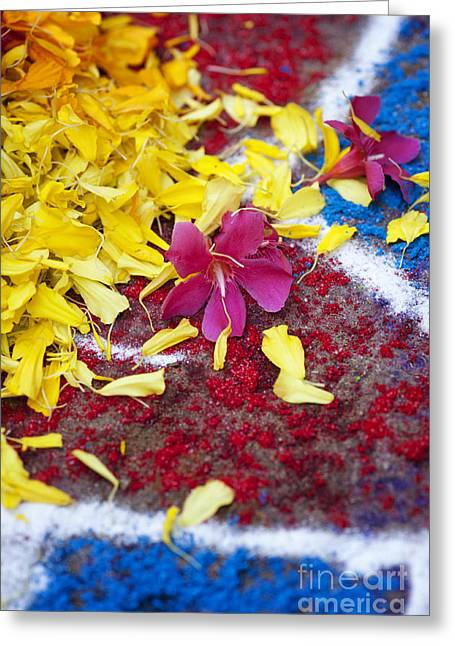 Indian Art Greeting Cards - Rangoli festival art with flower petals Greeting Card by Tim Gainey