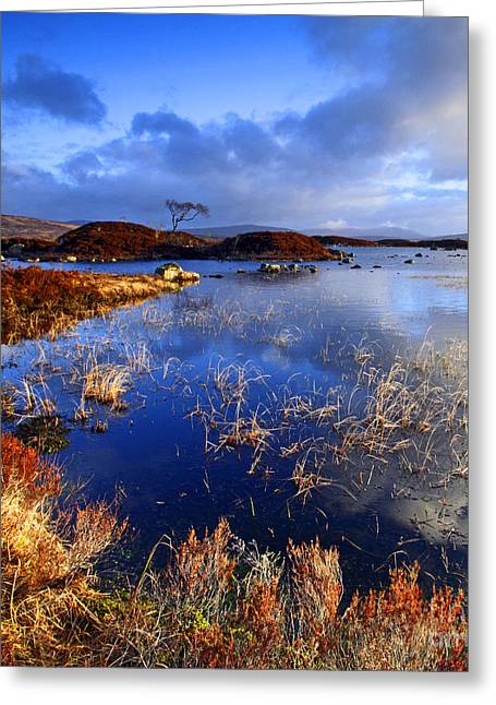 Rannoch Moor Greeting Cards - Rannoch Moor Lochan Greeting Card by Craig B
