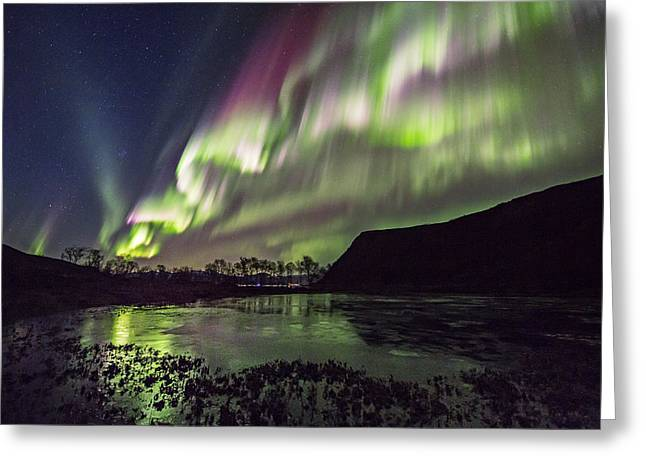 Astrophoto Greeting Cards - Rapid Auroras Greeting Card by Frank Olsen