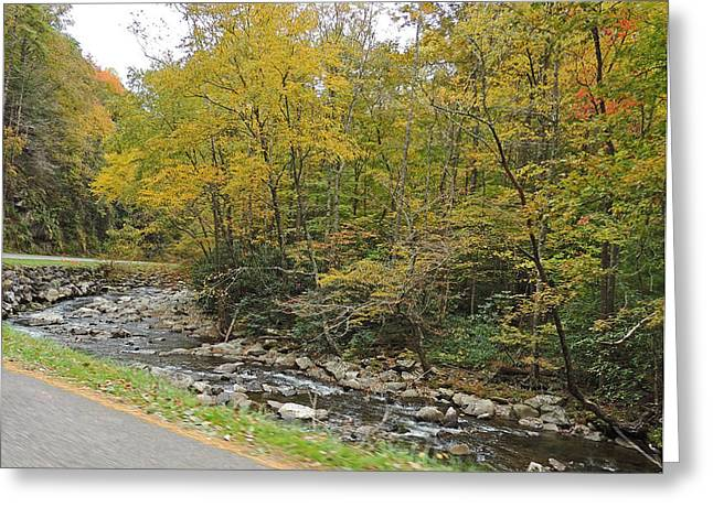 Gatlinburg Tennessee Greeting Cards - Rapids Along Little River Road Going to Cades Cove Greeting Card by Marian Bell