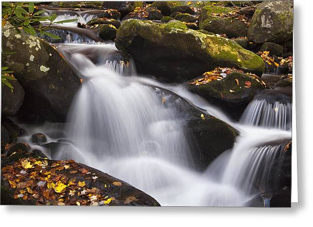 Tennessee River Greeting Cards - Rapids at Autumn Greeting Card by Andrew Soundarajan