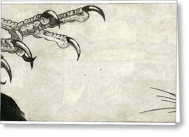 Raptor And Mouse - When There Is No Way Forward - Predator-prey System - Food Chain - Etching Series Greeting Card by Urft Valley Art