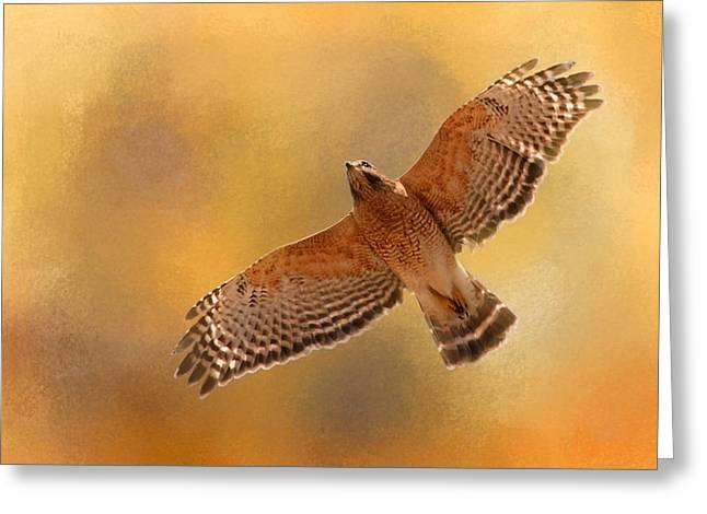 Hawks In Flight Greeting Cards - Raptors Afternoon Flight Greeting Card by Jai Johnson