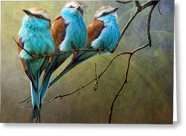 Racquet Greeting Cards - Raquet Tailed Rollers Greeting Card by R christopher Vest