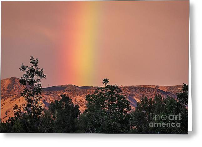 Colorful Cloud Formations Greeting Cards - Rare Iridescent Sky Greeting Card by Janice Rae Pariza