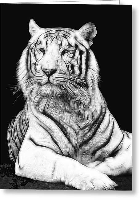 The Tiger Greeting Cards - White Tiger Greeting Card by Daniel Hagerman