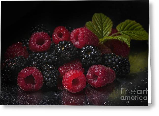 Red Green Black Pyrography Greeting Cards - Raspberries and blackberries Greeting Card by Natasha Breen