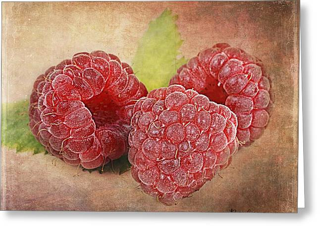 Barbara Orenya Greeting Cards - Raspberries  Greeting Card by Barbara Orenya