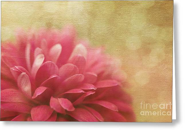 Bubbly Digital Greeting Cards - Raspberry Champagne  Greeting Card by Reflective Moment Photography And Digital Art Images