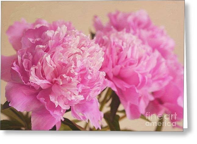 Flower Bombs Greeting Cards - Raspberry Sundae Greeting Card by Irina Wardas