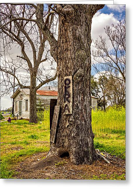 Weathered Paint Greeting Cards - Ravaged By Katrina Greeting Card by Steve Harrington