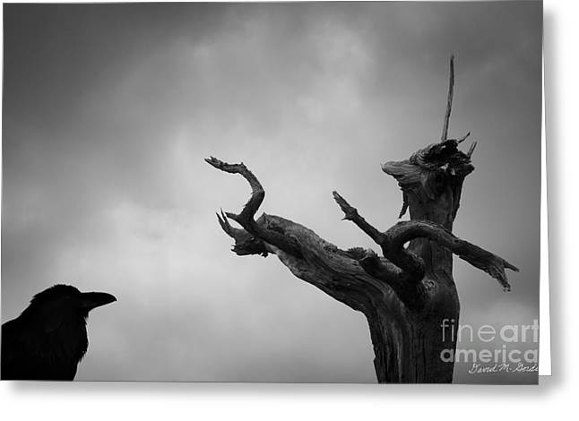Corvus Corax Greeting Cards - Raven and Shamanic Tree  Greeting Card by David Gordon