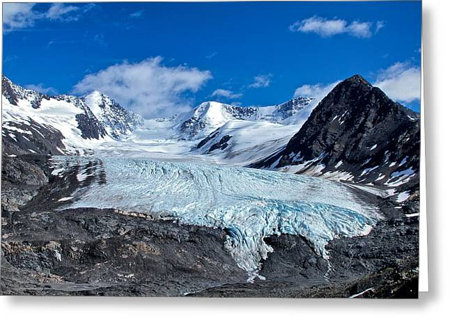 Glacier Greeting Cards - Raven Glacier 2 Greeting Card by Ed Boudreau