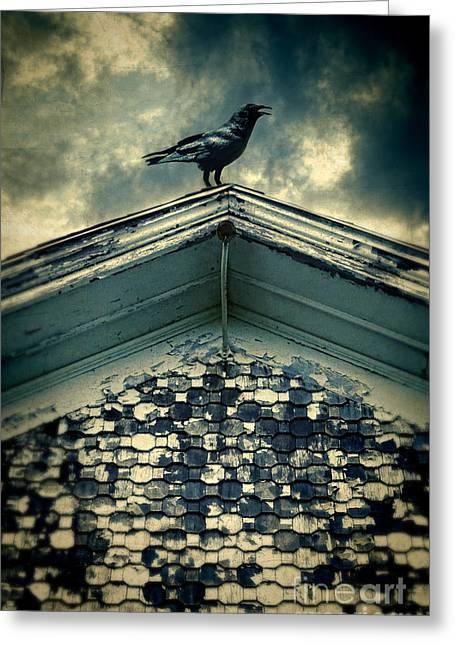 Clapboard House Greeting Cards - Raven on Roof Greeting Card by Jill Battaglia