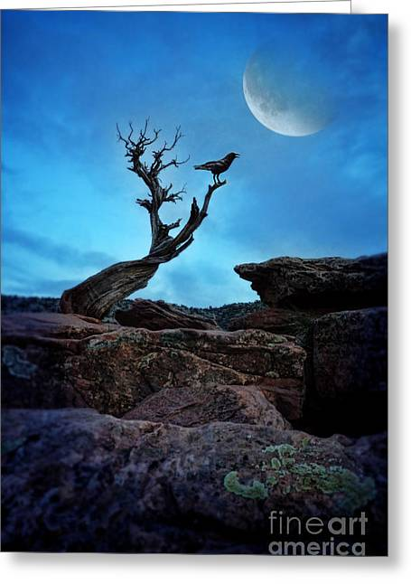 Moonlit Night Greeting Cards - Raven on Twisted Tree with Moon Greeting Card by Jill Battaglia