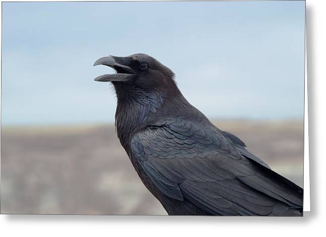 Julie Magers Soulen Greeting Cards - Raven or Trickster Greeting Card by Julie Magers Soulen