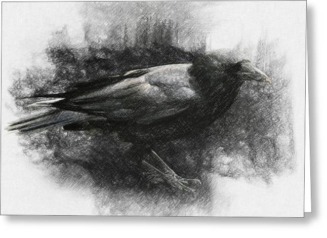 Amazing Drawings Greeting Cards - Raven Greeting Card by Taylan Soyturk