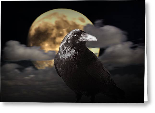 Raven Under The Harvest Moon Greeting Card by Randall Nyhof