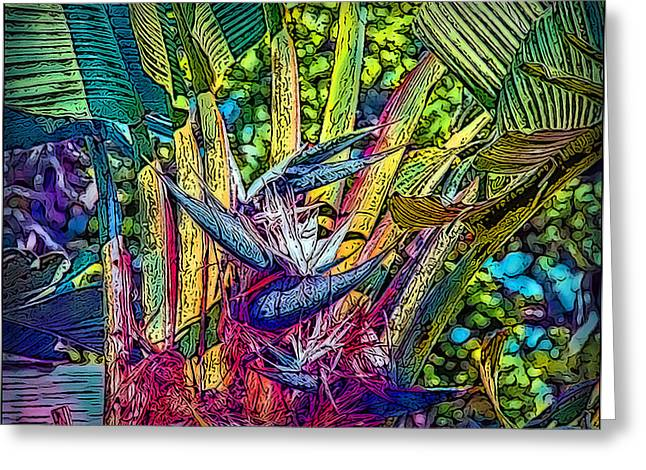 Fineartamerica Greeting Cards - Ravenala Greeting Card by Hanny Heim