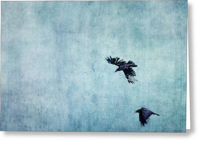 Raven Greeting Cards - Ravens flight Greeting Card by Priska Wettstein