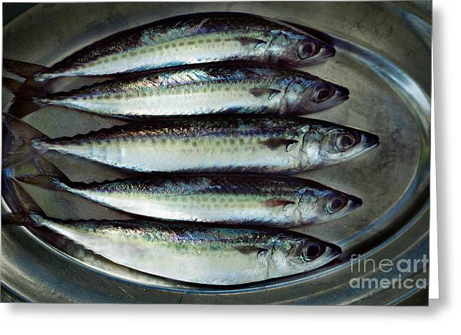 Raw Fish Greeting Card by Mythja  Photography
