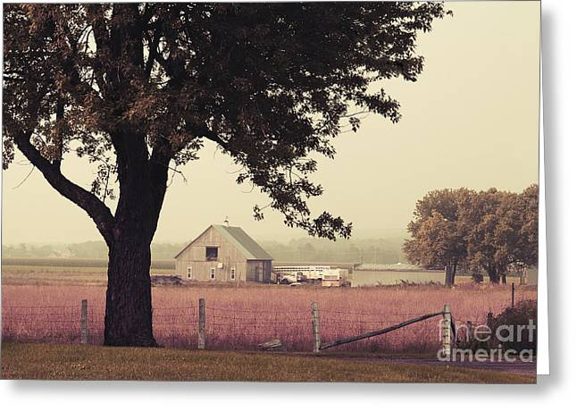 Recently Sold -  - Aimelle Prints Greeting Cards - Rawdons Countrylife Greeting Card by Aimelle