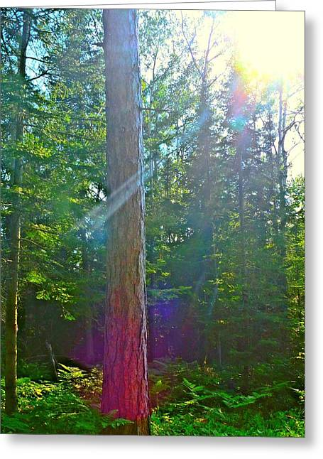 Rayon Vert Greeting Cards - Ray of Hope Greeting Card by Gigi Dequanne