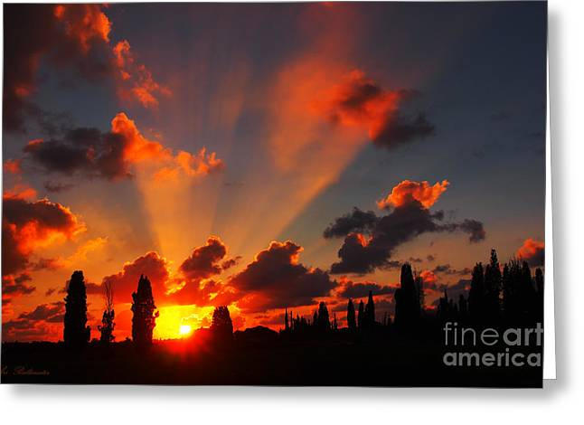 Sunset Posters Greeting Cards - Rays of Hope 02 Greeting Card by Arik Baltinester