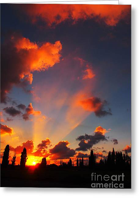 Sunset Greeting Cards Greeting Cards - Rays of Hope 03 Greeting Card by Arik Baltinester