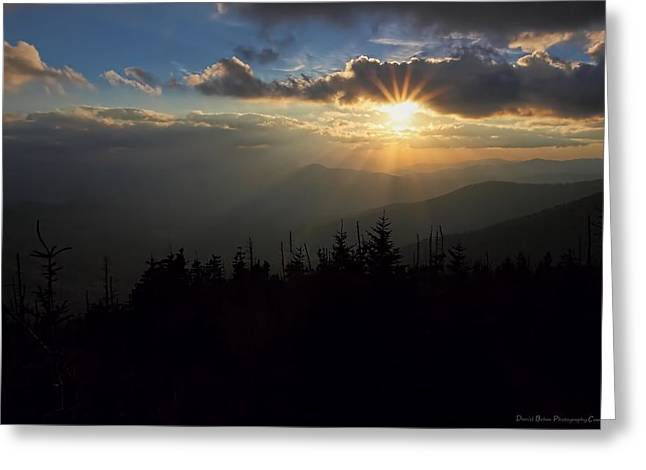 Rays Of Light Greeting Card by Daniel Behm