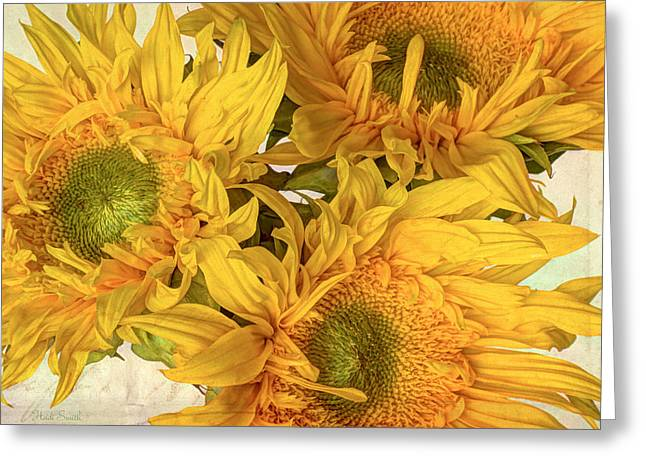 Trio Greeting Cards - Rays Of Sunshine with Texture Greeting Card by Heidi Smith