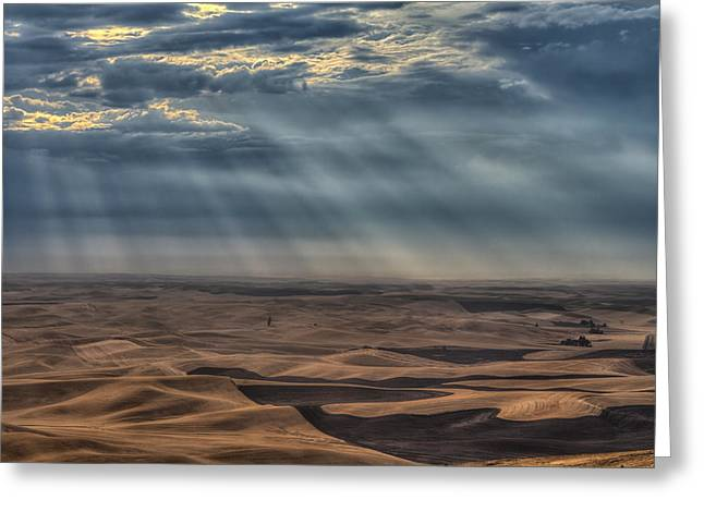 Summer Wheat Greeting Cards - Rays on the Palouse Greeting Card by Mark Kiver