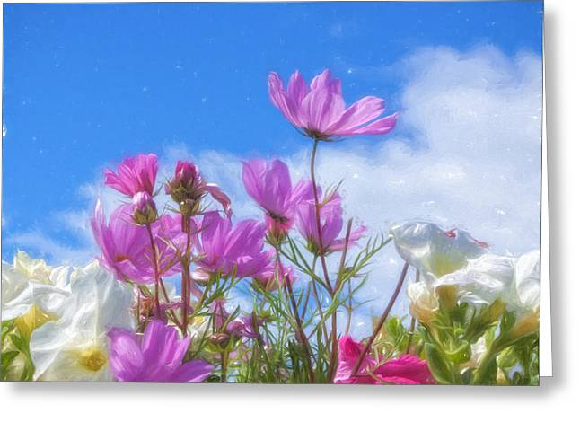 Reach For The Sky Greeting Card by Kim Hojnacki