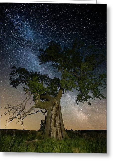 Sar Greeting Cards - Reach for the Stars Greeting Card by Aaron J Groen