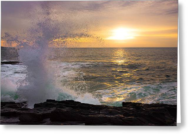 Recently Sold -  - New England Ocean Greeting Cards - Reaching Greeting Card by Benjamin Williamson