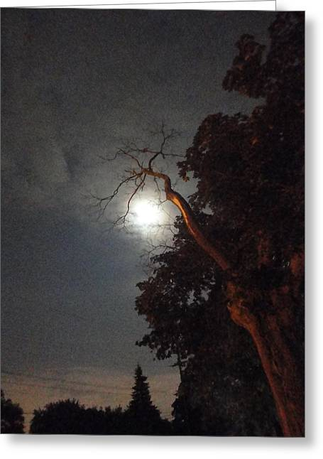 Guy Ricketts Greeting Cards - Reaching for the Moon Greeting Card by Guy Ricketts