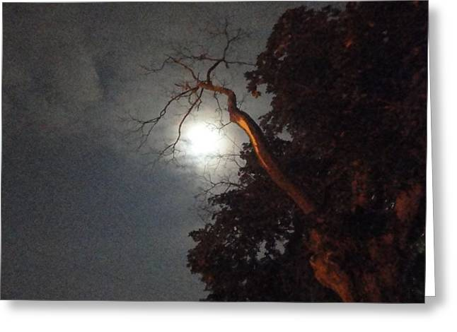 Reaching for the Moon Greeting Card by Guy Ricketts