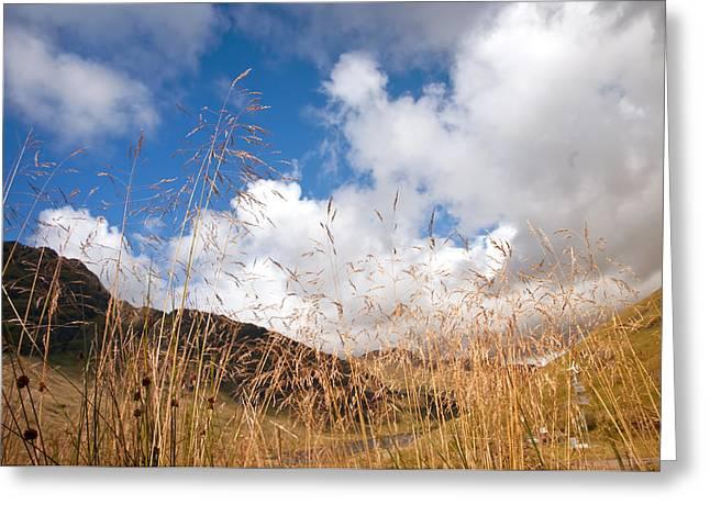 Jenny Rainbow Fine Art Photography Greeting Cards - Reaching the Sky. Highlands. Scotland Greeting Card by Jenny Rainbow