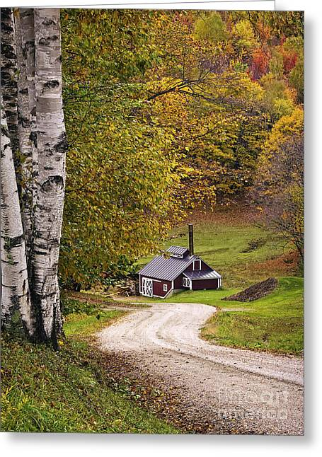 Sugaring Season Greeting Cards - Reading Vermont Sugar Shack Greeting Card by Priscilla Burgers