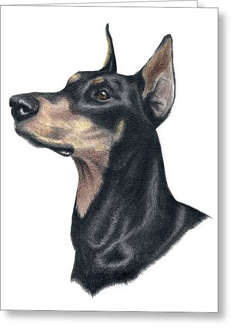 Police Art Drawings Greeting Cards - Ready Doberman Greeting Card by Heather Mitchell