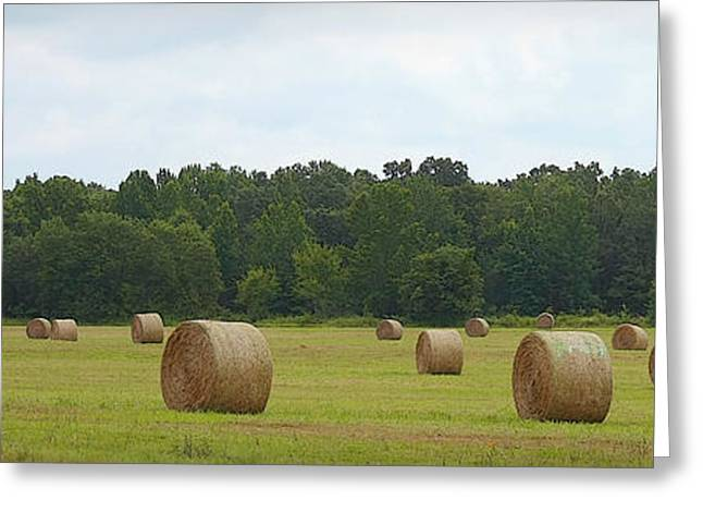 Haybale Greeting Cards - Ready for Pick Up Greeting Card by CarolLMiller Photography